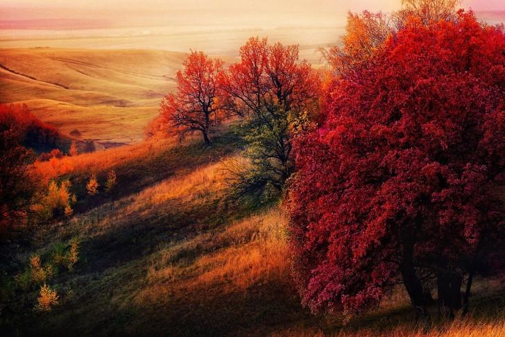 © Marat Zakirov